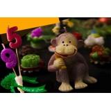 شمع سال 1395 ( میمون)